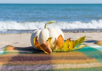 Enjoy Fall Activities and Things to Do in Volusia County