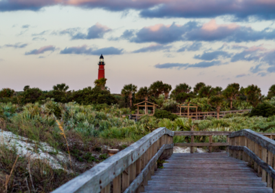 Discovering Native Florida: Ponce Inlet Plant Guide